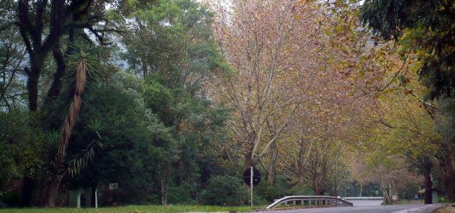 Parque Caracol em Canela