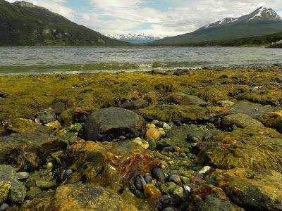 Parque Nacional Terra do Fogo em Ushuaia