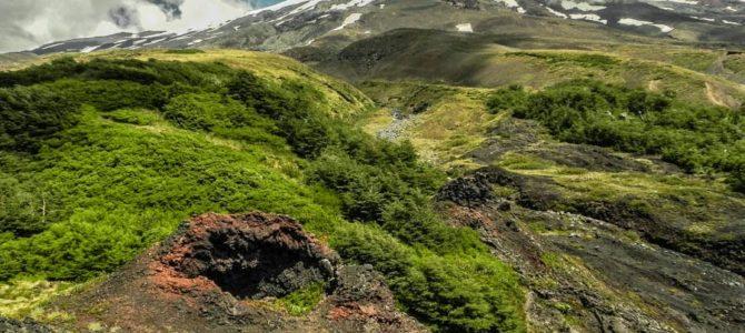 Dia 18 – Parque Nacional Villarrica – Cuevas Vulcânicas