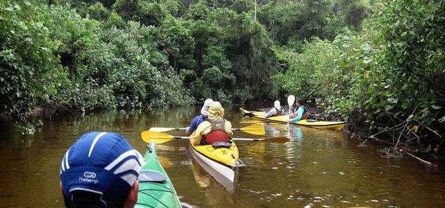 Segundo dia da travessia do Saco do Mamanguá (caiaque)