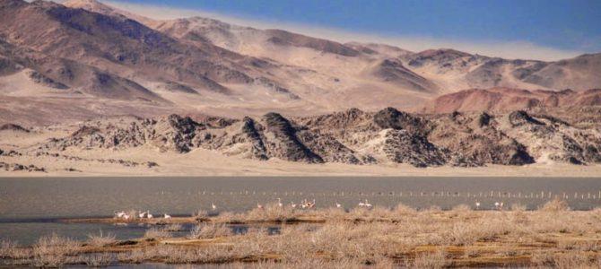 Laguna Blanca e Ruínas Shincal – Argentina