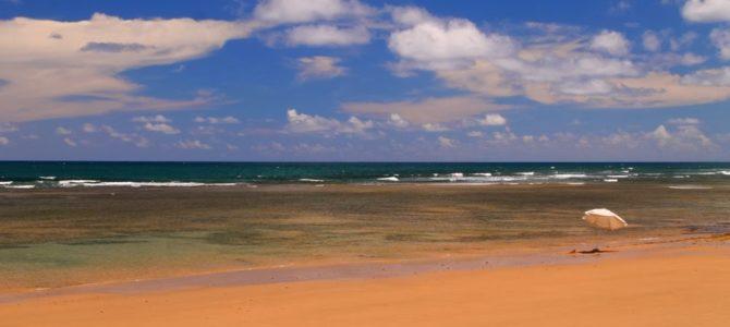 Caminhada da Praia de Algodões a Saquaíra – Brasil