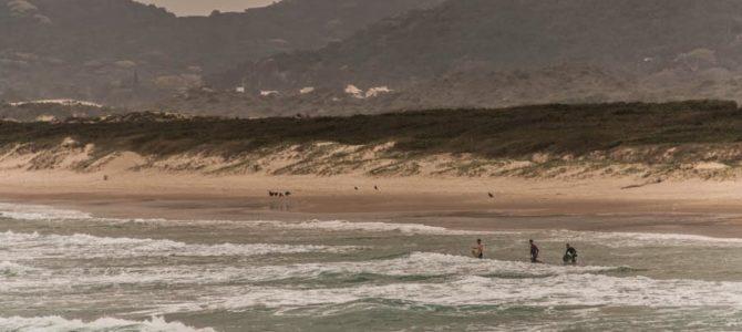 Florianópolis: Praia da Joaquina, trilha Praia Mole a Barra da Lagoa