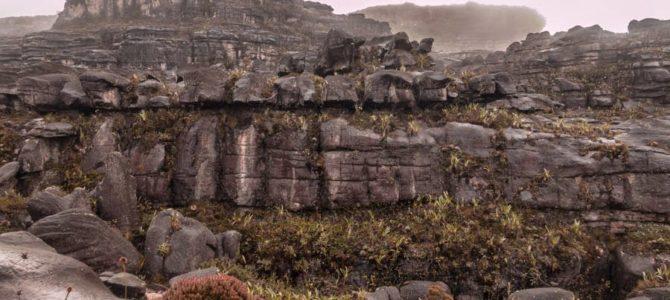 Descida do Monte Roraima (acampamento do Rio Tek)