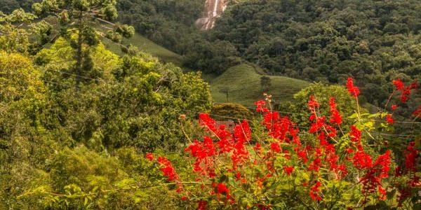 Cachoeira do Alcantilado na Região de Mauá
